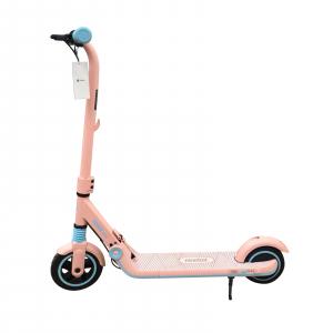 Электросамокат Ninebot eKickScooter Zing E8 Pink