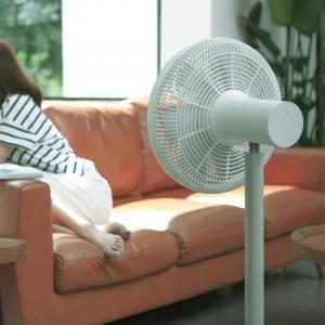 Напольный вентилятор Xiaomi Smartmi DC Inverter Floor Fan 3 (ZLBPLDS05ZM)