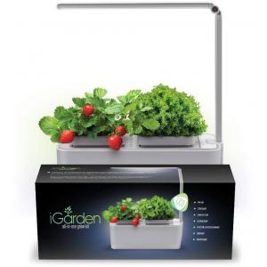 Смарт-сад с подсветкой iGarden LED