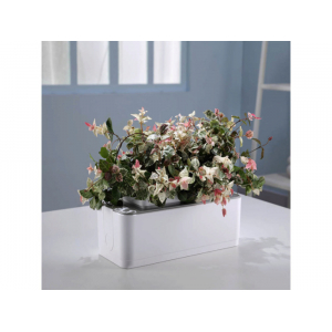 Компактный смарт-сад - iGarden